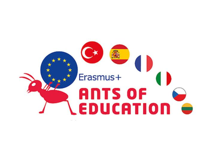 Ants of Education